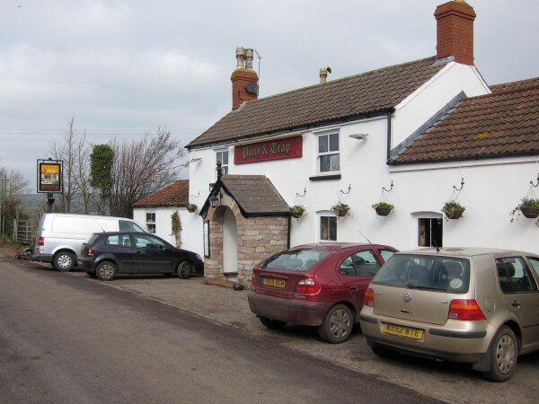 Pony and Trap - Newtown, Chew Magna